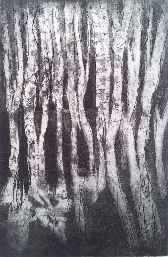 'Birch tree forest' Aquatint Etch - 10 x 15 cm