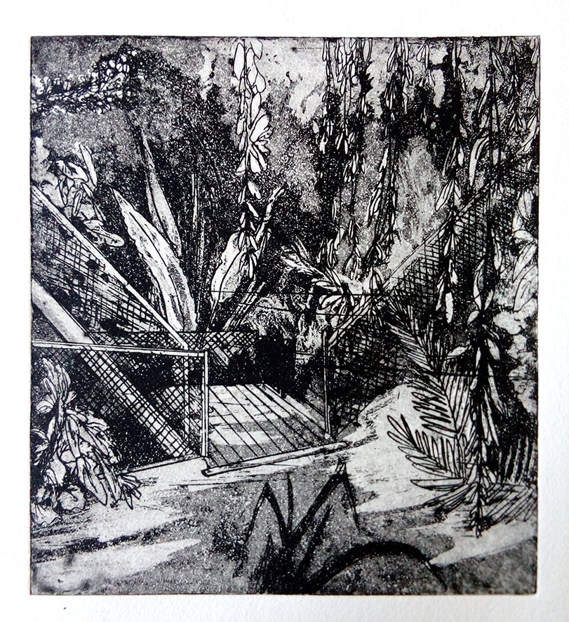 Botanical Garden Leiden' , aquatint etch, 2019, 16,5 x 18 cm edition 5)
